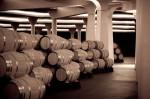 Museo del vino Bodegas Dinastia Vivanco.JPG