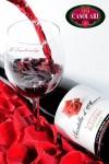 Il Lambrusco dona una Scintilla d-Amore a San Valentino.jpg