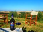 Brunello-e-panorami-Fattoria-del-Colle-Agriturismo-in Toscana.JPG