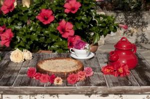 cheesecake grande sito-7690