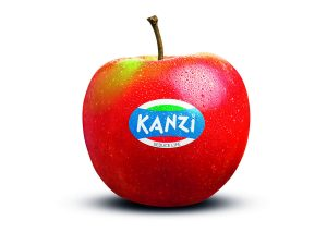 Kanzi_Mela
